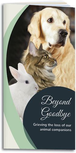 Beyond Goodbye Brochure