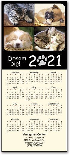 Dream Big! Tri-fold Calendar with Envelope
