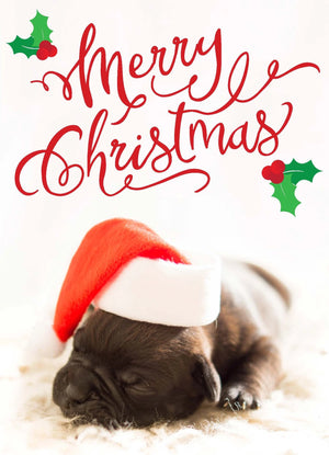 Sleeping Puppy Christmas Folding Card