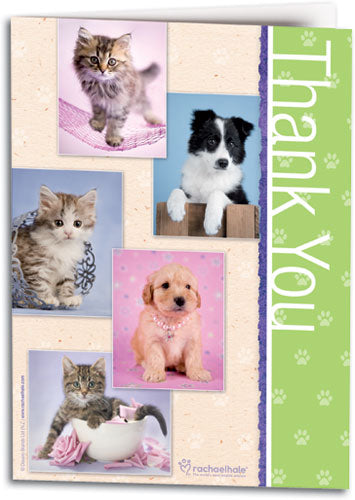Thank You Pet Portraits Folding Card