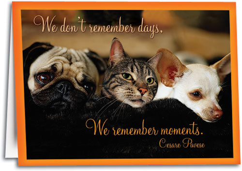 Remember Moments Sympathy Card