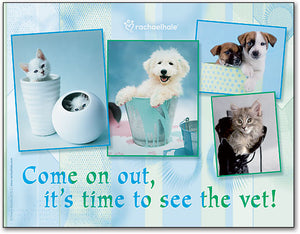Come On Out Pets Postcard