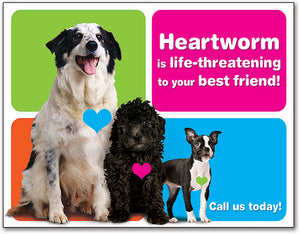 colourful Heartworm 4-up Laser Card