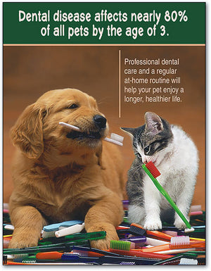 Dental Disease Pets 4-up Laser Card