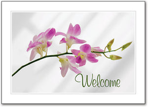 Pink Orchid Welcome Folding Card