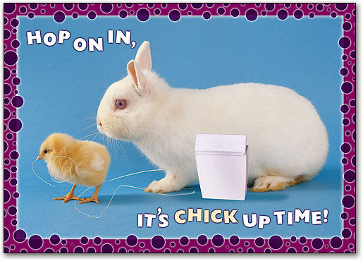 Chick Up Time Postcard