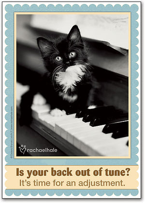 Kitty on Keys Postcard
