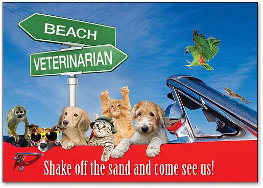 Shake Off The Sand customisable Standard Postcard