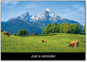 Mountain and Cattle Postcard