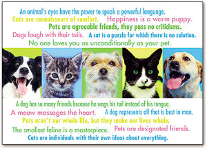 Pet Quotes Postcard