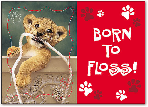Born to Floss Postcard