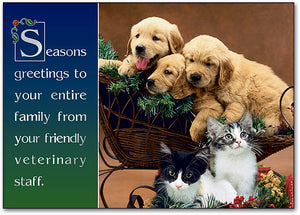 Puppies/Kittens Holiday Postcard