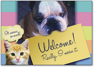Welcome Really Mean It Postcard