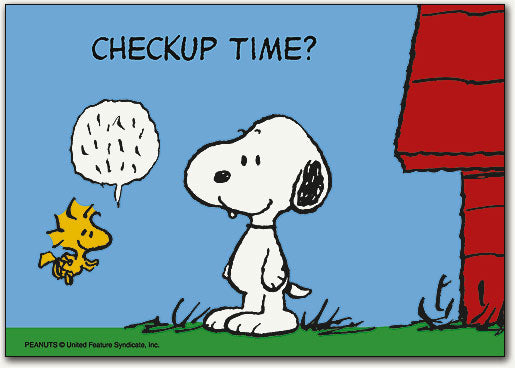Snoopy/Woodstock & Kennel Postcard