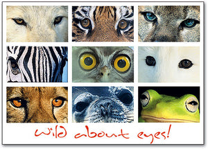 Wild About Eyes Postcard