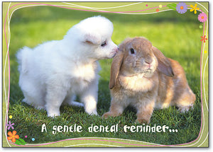 A Gentle Dental Reminder Postcard