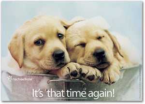 Time Again Puppies Postcard