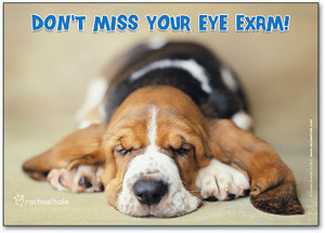 Basset Eye Care Postcard