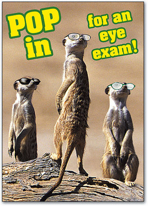 Glasses Meerkats Postcard