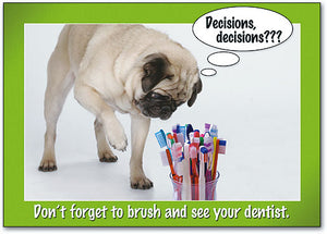 Decisions Brushes Postcard