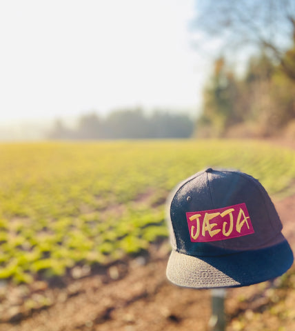 Jaeja snapback hat countryside (fernweh gear)