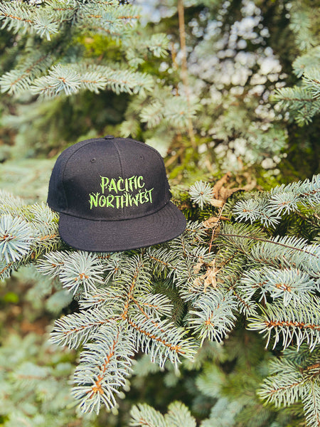 Front view PNW Branches black snapback hat