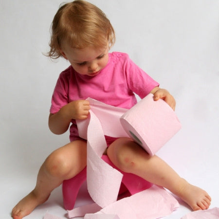 Brolly Sheets free potty training buying guide