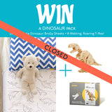 Competition Winner Waterproof Dino Brolly Sheet and Toy