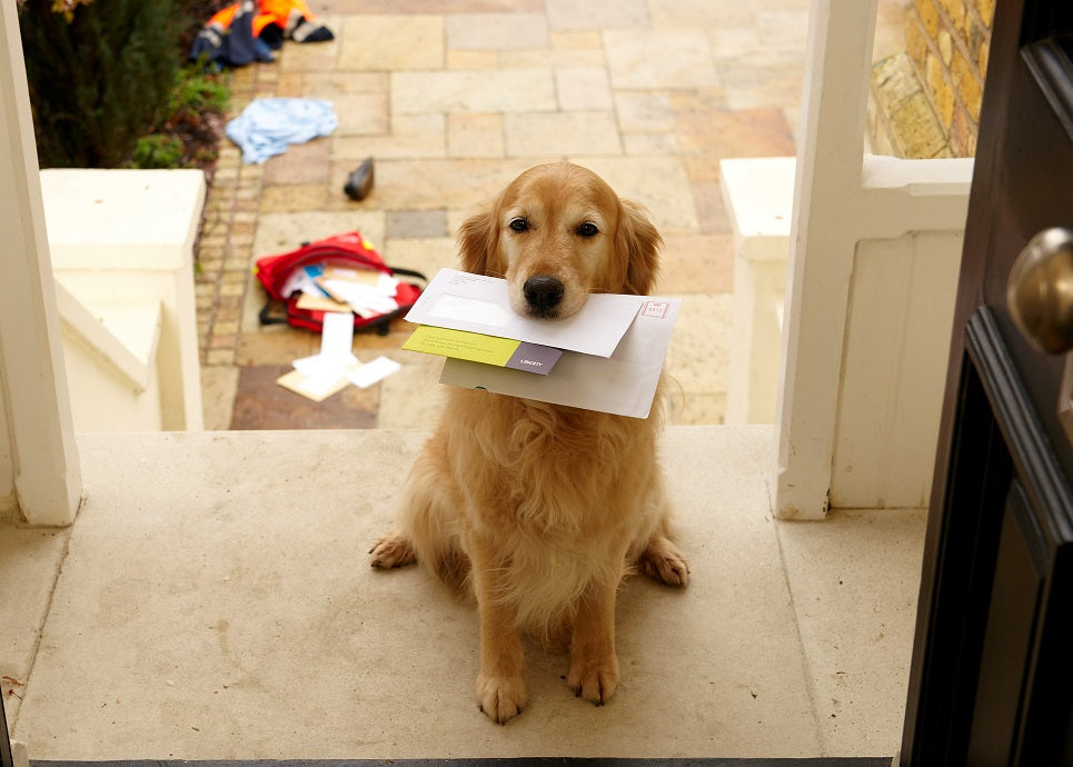 """You've been robbed"" stop mail theft now!"