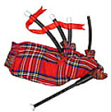 Toy Bag Pipes with Functional Chanter