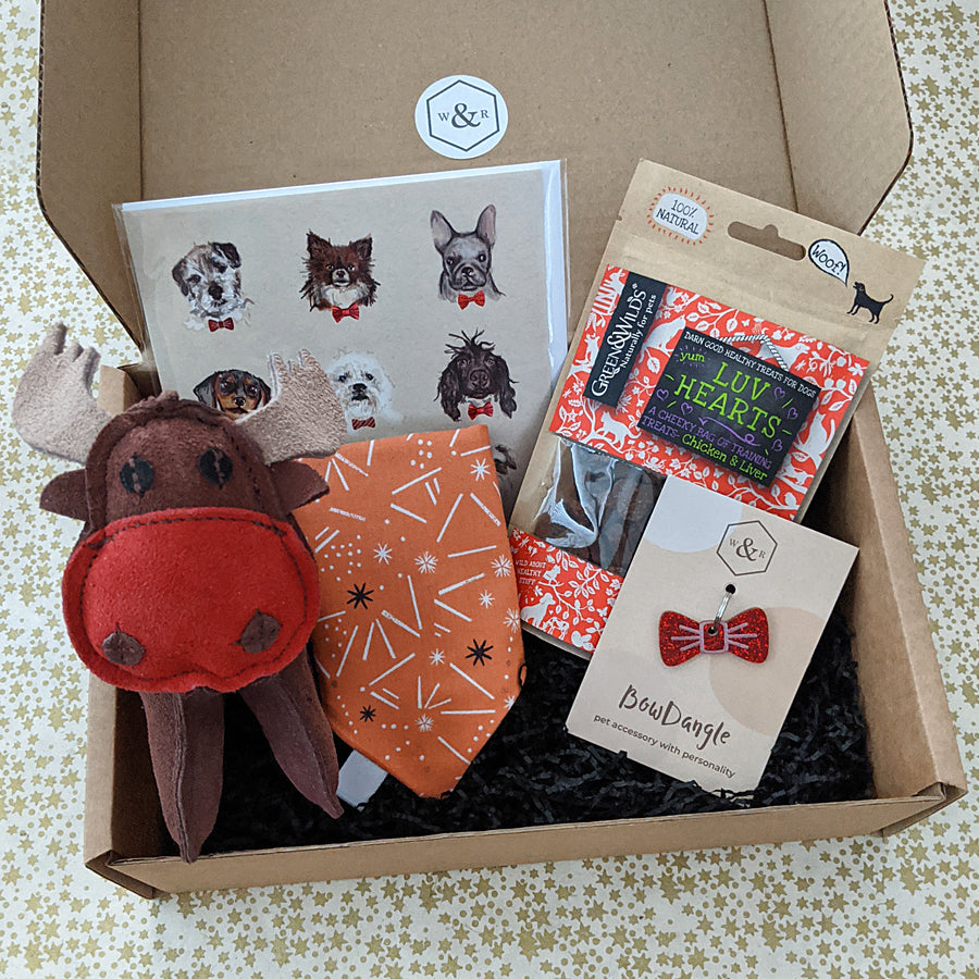 Luxury Doggy Gift Box (inc. Wonderful Winter Bandana)