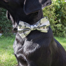 Load image into Gallery viewer, Wren & Rye - Zebra Print Bow Tie - Dog Shot
