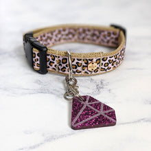 Load image into Gallery viewer, Raspberry Cream Leopard Print Collar Lead Set