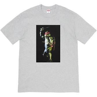Supreme Raphael Tee Heather Grey