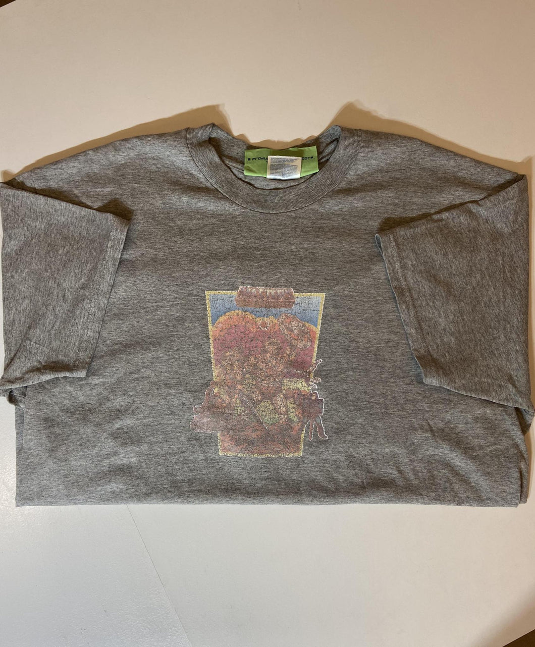 Vintage Gray He Man Shirt (Pre - Owned)