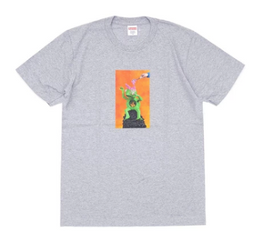 Supreme- Mike Hills Brain Tee (Pre - Owned)