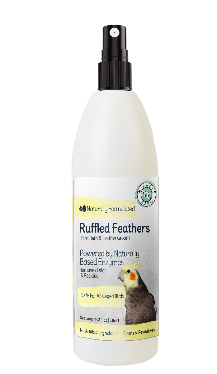 Ruffled Feathers Bird Bath & Feather Groom