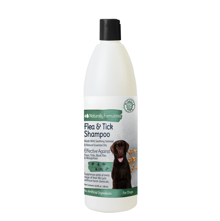 Natural Flea & Tick Shampoo for Dogs with Oatmeal