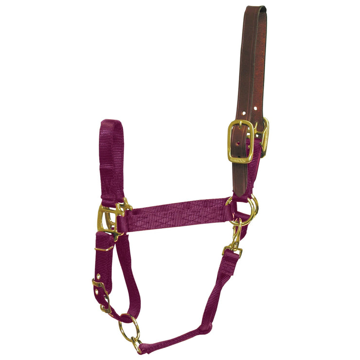 "1"" Deluxe Nylon Break-Away Halters with Leather Head Poll, Adjustable Chin & Snap - Halter - Hamilton - Miracle Corp"