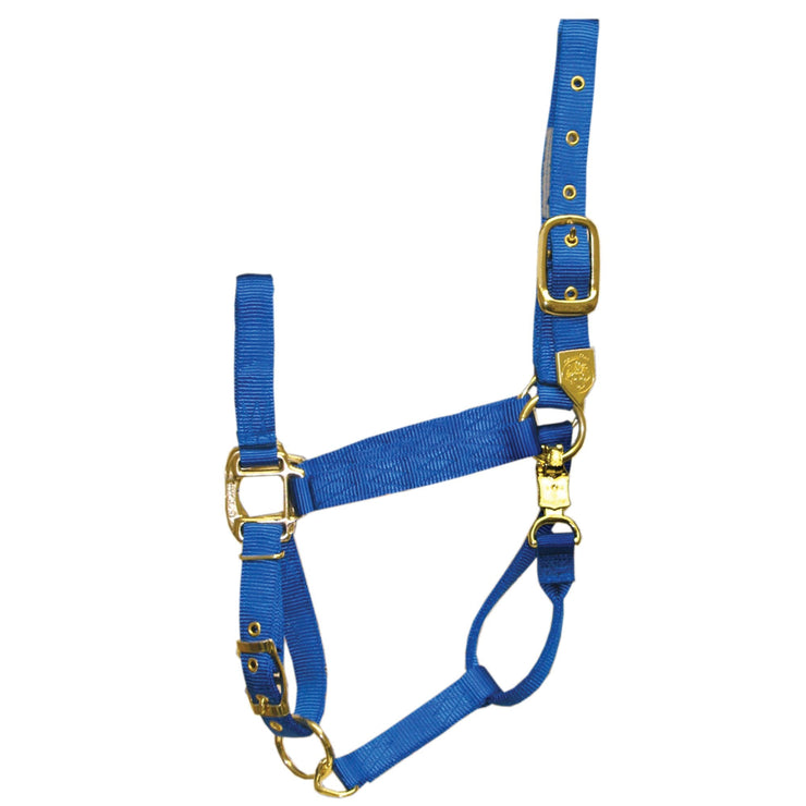 "1"" Deluxe Nylon Halters with Adjustable Chin Strap and Panic Snap - Halter - Hamilton - Miracle Corp"