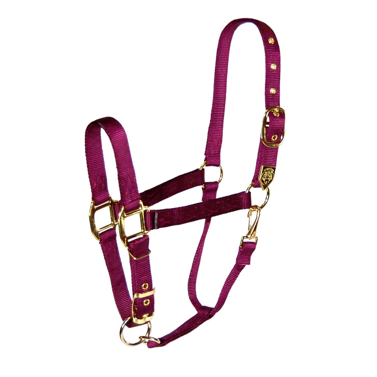 "1"" Draft Deluxe Nylon Halters with Adjustable Chin Strap - Halter - Hamilton - Miracle Corp"