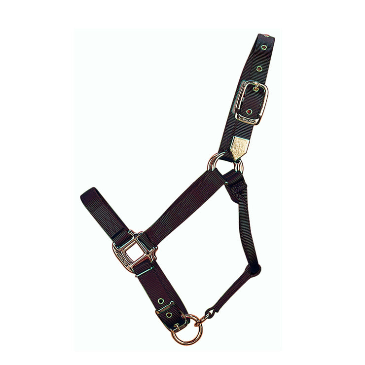 "1"" Deluxe Nylon Halters with Adjustable Chin Strap - Halter - Hamilton - Miracle Corp"