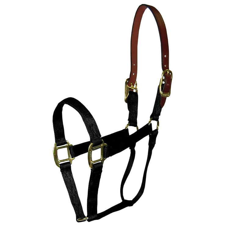 "1"" Deluxe Nylon Break-Away Halters with Leather Head Poll - Halter - Hamilton - Miracle Corp"
