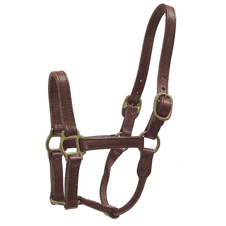 "1"" Deluxe Leather Halters - Halter - Hamilton - Miracle Corp"