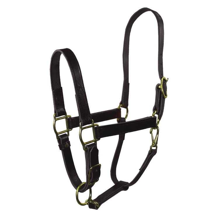"1"" Quality Leather Halters with Adjustable Chin & Snap - Halter - Hamilton - Miracle Corp"