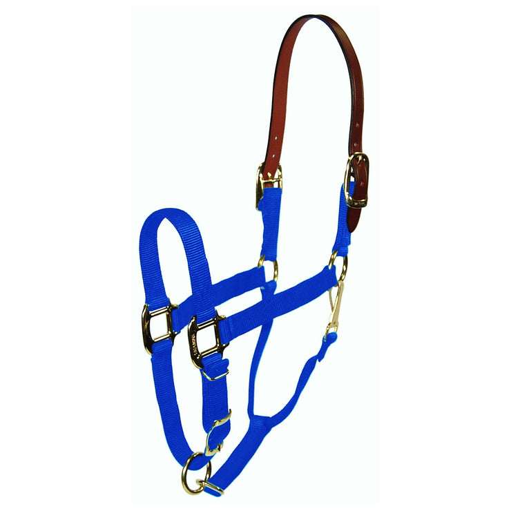 1‰۝ Quality Nylon Break-Away Halter with Leather Head Poll, Adjustable Chin & Snap - Halter - Hamilton - Miracle Corp