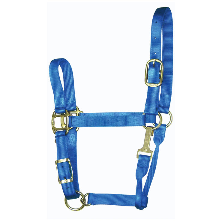 1‰۝ Quality Nylon Halters with Adjustable Chin Strap & Snap - Halter - Hamilton - Miracle Corp