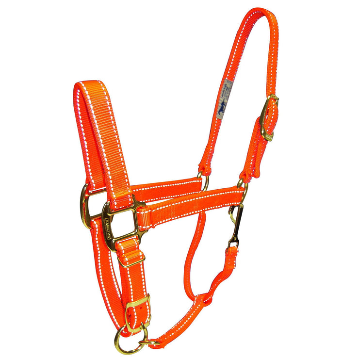 "1"" Quality Reflective Halters with Adjustable Chin & Snap - Halter - Hamilton - Miracle Corp"