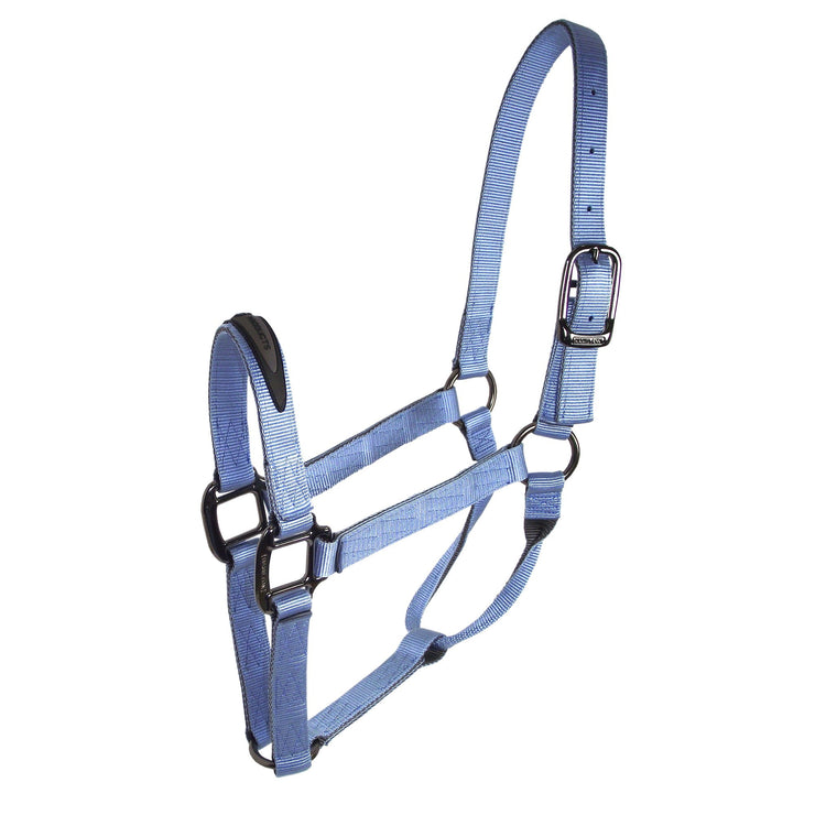 "1"" Two Tone Quality Nylon Halters with Gunmetal Hardware - Halter - Hamilton - Miracle Corp"