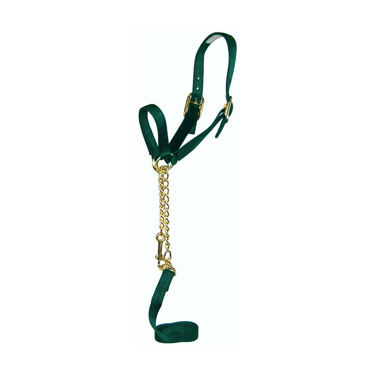Nylon Show Halter with Control Chain, Double Buckle Crown & Lead - Halter - Hamilton - Miracle Corp